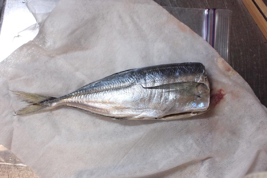 「お魚 冷凍・解凍シート」を開いてみた様子。生臭さを全く感じない