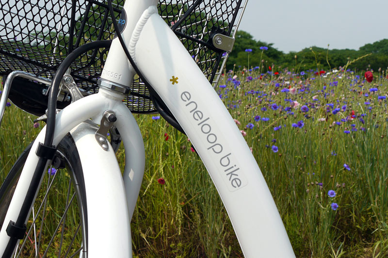 ダウンチューブには「eneloop bike」のロゴが。電池のエネループと同様のイメージでちょっとカッコイイかも