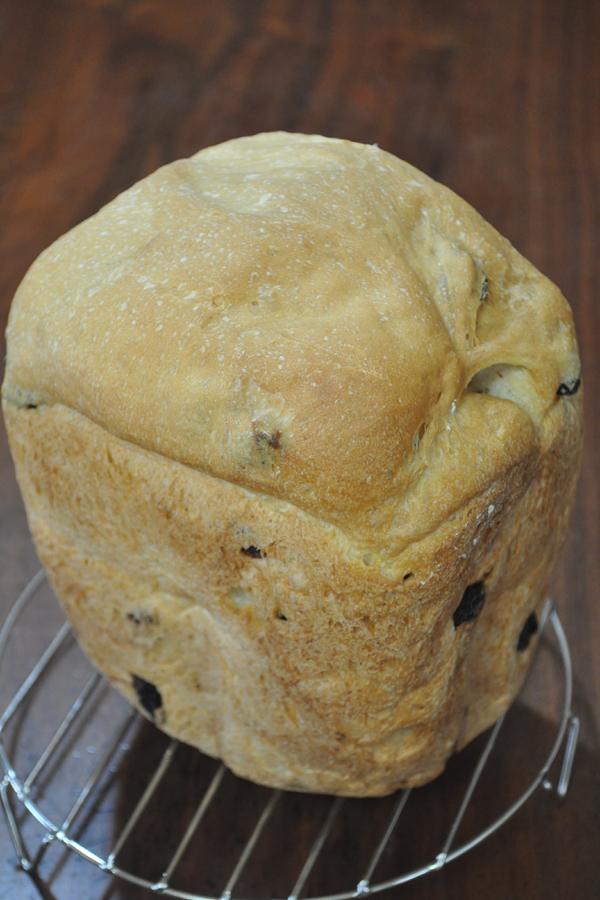 国産小麦で作ったレーズン食パンが完成! 見事に膨らんでいる