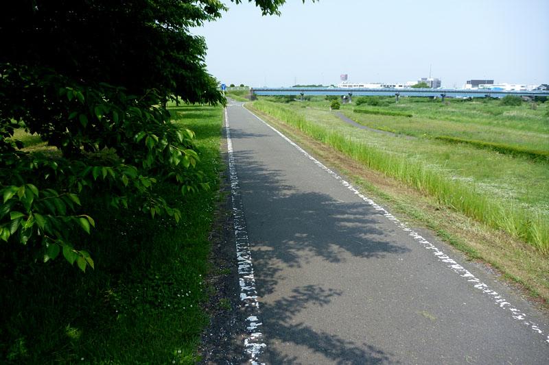 入間川サイクリングロードはこんな道。自転車3台の併走は無理って感じの狭めのサイクリングコースだ。サイクリングロードとは言っても、徒歩やジョギングの人にも解放されている