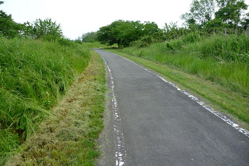 緑に囲まれた道も。走行スピードは20km/h平均となるようにしてみた。ママチャリとしてはけっこー飛ばしている感じですな