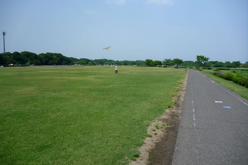 目的地の安比奈運動公園が見えてきた。入間川サイクリングロードのなかではもっともよく整備された公園だと言えよう