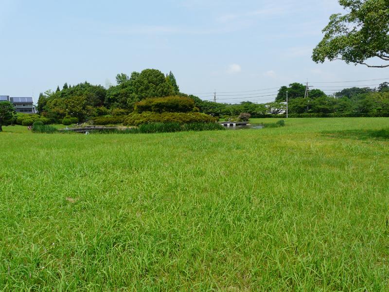 入口付近の芝生広場を使って、7月末に恒例の納涼大会が行われる