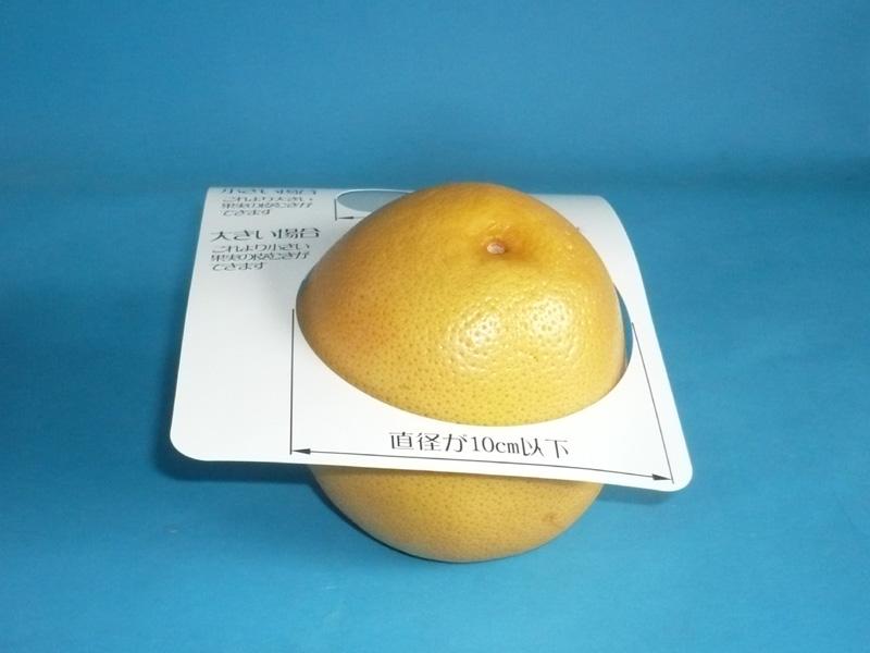 果物が大きすぎた例