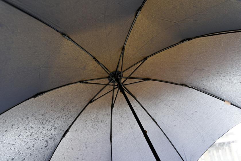 傘本体に特徴的な部分はなく、説明書なしでも扱える