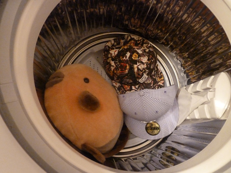 洗濯槽に入れる