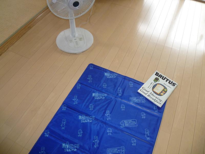 暑い日のゴロ寝座布団代わりにも