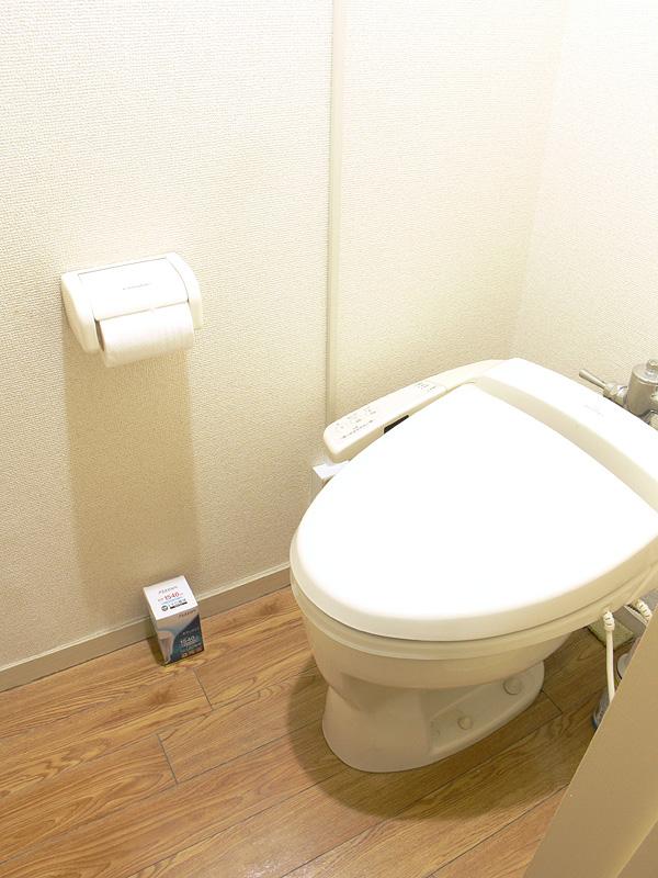 <b>【エクスレディア・昼光色】</b><br>狭い空間にはいくらなんでも明るすぎる。トイレには向かない