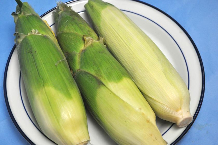 北海道のトウモロコシが出回る季節!