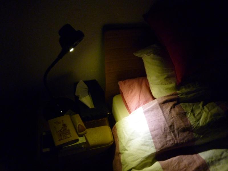 IG-DL1Sのライトのみを付けたところ