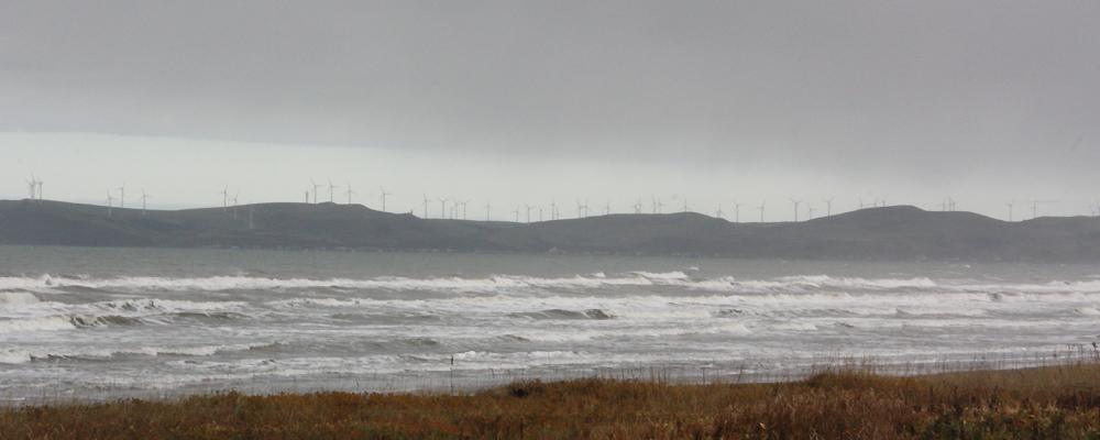 稚内市街地から宗谷岬方向を望むと、丘の上に無数の風車が建っているのがわかる