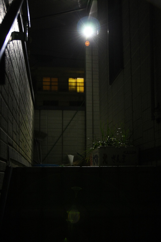 階段下からでも十分に階段のエッジが見えるので、足元がおぼつくこともない