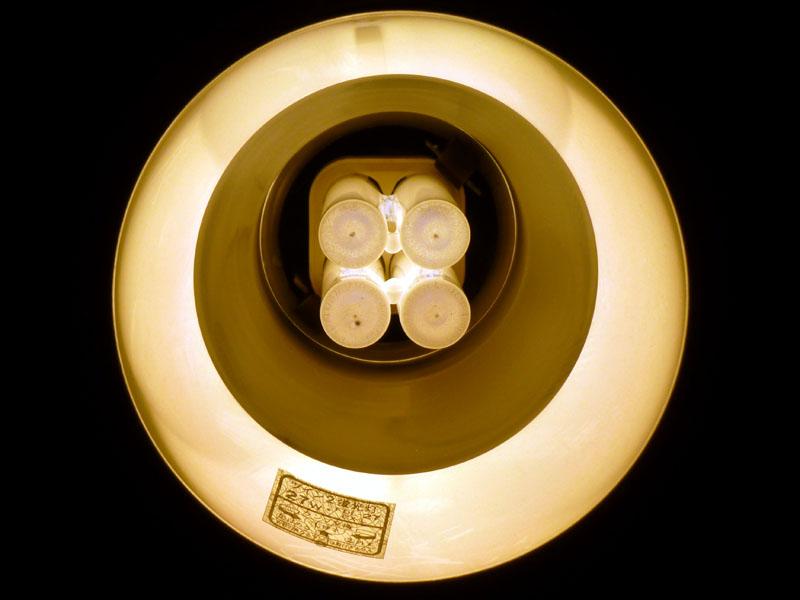 コネクタが奥にあり、垂直に蛍光灯が入っている