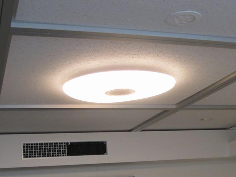 シャープ「さくら色LEDシーリングライト」の『ソメイヨシノ』カラー