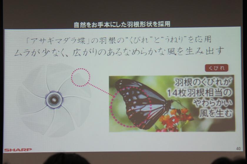 PJ-B3CXHの羽根のモデルとなったのは、海を越えて飛ぶ「アサギマダラ蝶」