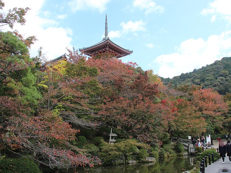 昼間の清水寺。紅葉シーズンの真っ最中で、多くの旅行客で賑わっている