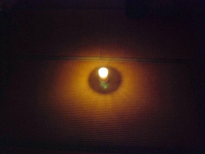 畳の上に置いてみる。写真だと暗く見えるが、周囲はもう少し明るい