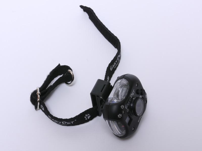 小型犬用の首輪とカメラの固定具を取り付けたところ