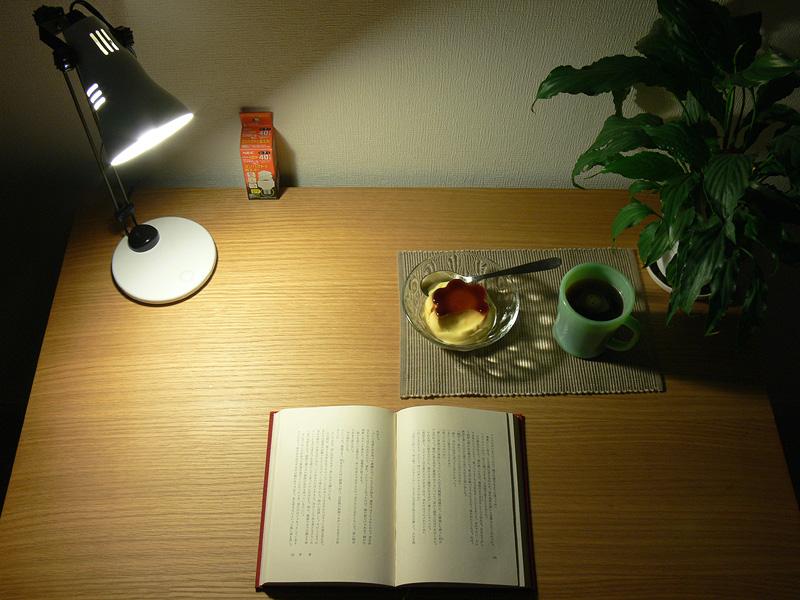 """<strong class="""""""">【小型電球形蛍光灯】</strong><br class="""""""">蛍光灯も明るさは十分。ただし、色味はミニクリプトン電球と比べ全体的に劣る"""
