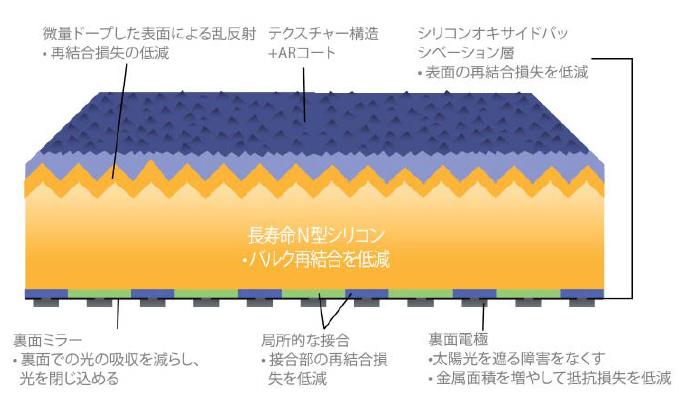 サンパワーのパネルの断面図。表面にシリコンを、裏面に電極を配置した「バックコンタクト」構造になっている