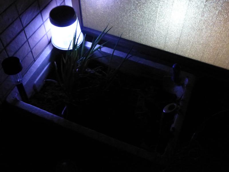 普段は、このように発泡スチロール製のプランター脇に置いている。意外と下方向を照らしてくれないのがわかる。左側の100円ガーデンライトは、すでに電池を使いきって消灯している