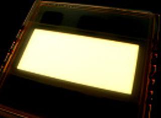 発光面積25平方cmの素子