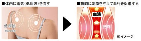 微弱な電気(低周波)の流れが筋肉を刺激する
