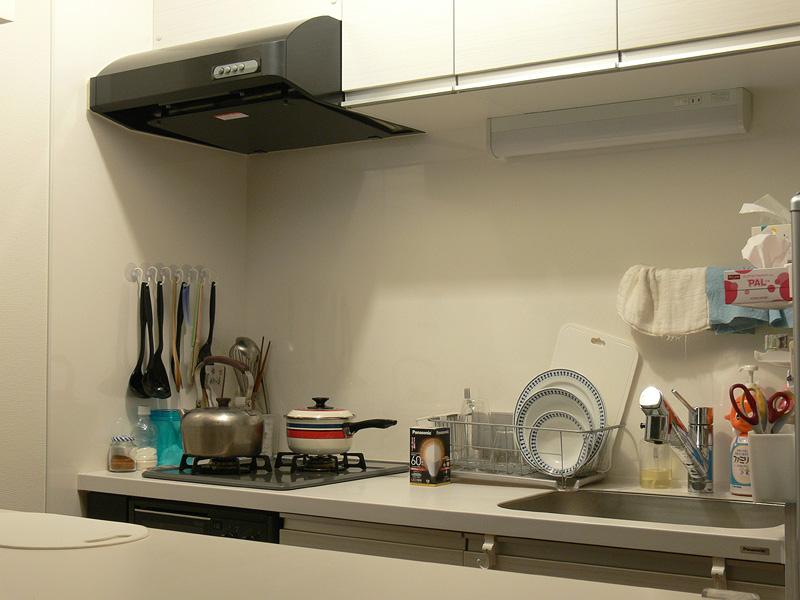 "<strong class="""">【電球色 LDA10L-G/Z60/W】</strong><br class="""">白熱電球とほぼ同じ明るさだが、食材の色、キッチン周りの汚れはスッキリ見えない"