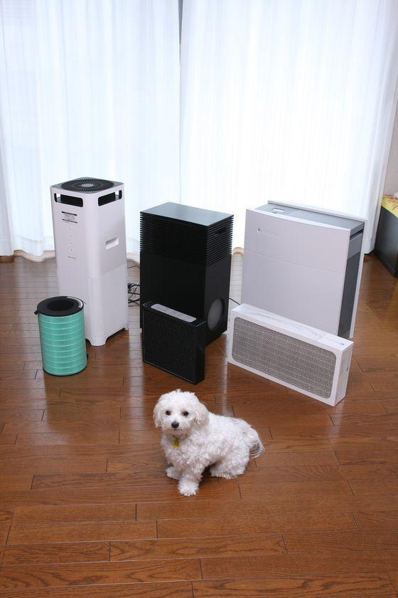空気清浄機の運転音は静かなので、掃除機の音が嫌いな犬でも、まったく怖がらない