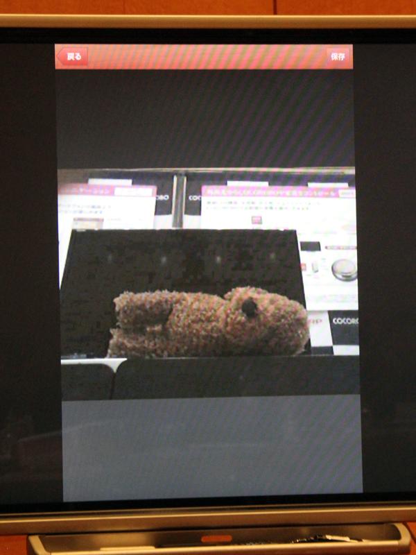 室内のペットの様子をCOCOROBOのカメラを通じて知ることもできる