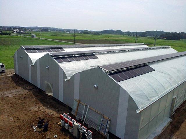 建設されたグリーンハウス。屋根の上に太陽電池モジュールが見える