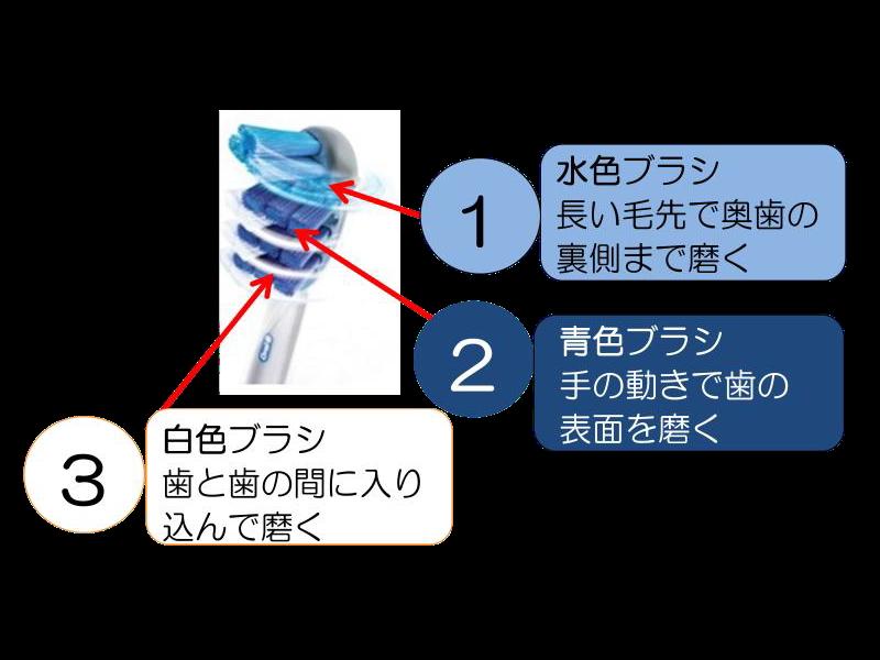 設計の異なる3色のブラシが3通りの動きで歯垢を除去する
