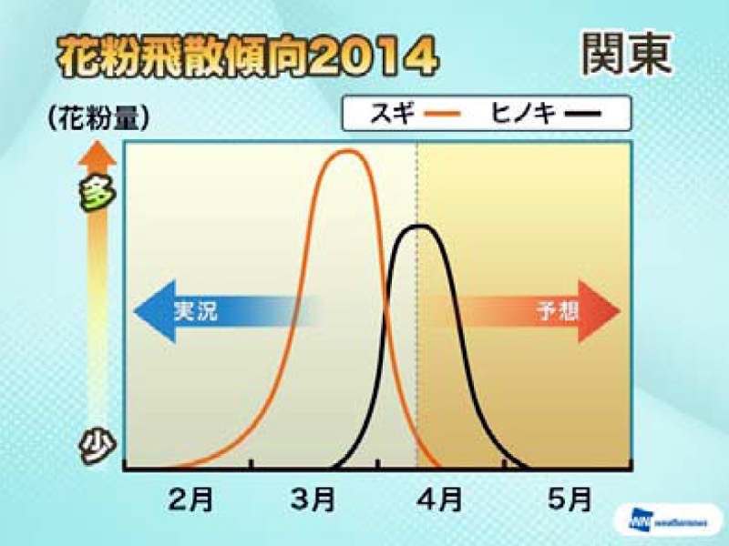 関東地方では、スギ花粉は終わりかけで、ヒノキ花粉が4月下旬まで続く