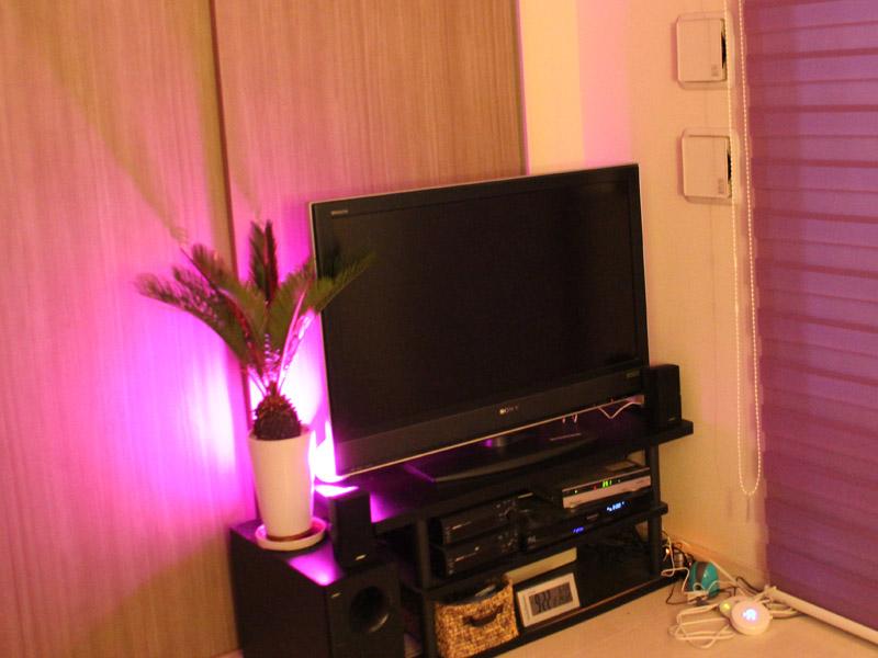 テレビの裏側に設置して、観葉植物を照らすようにした