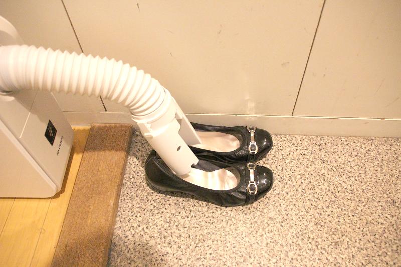 普段使いのヒールの低い靴も送風しやすかった