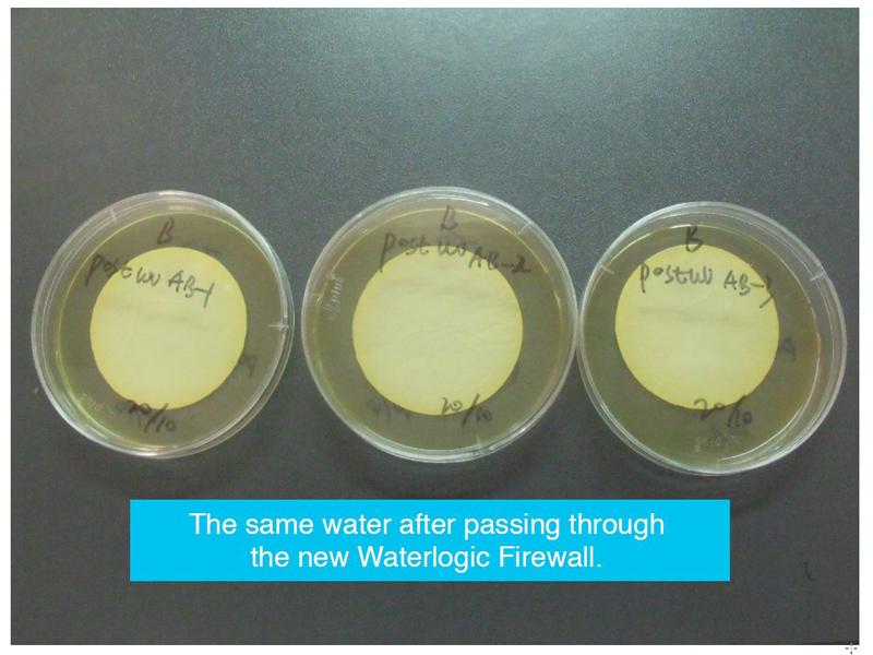 同じ製品でFirewallを通した後の水。菌は検出されなかった