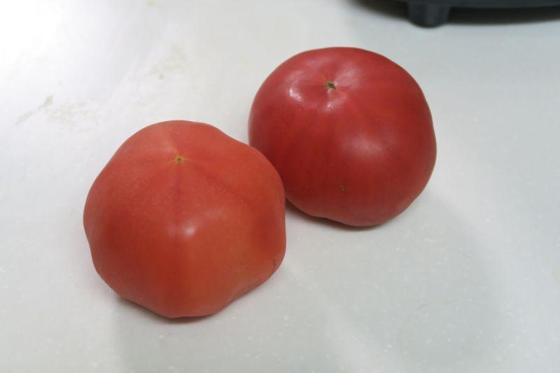 トマトは一口大にして投入。いわゆるトマトジュースとは違い、さらっとしていながらも粘りけのある口触りのジュースとなった。味は酸味が強めだった