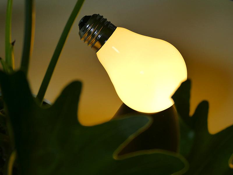 葉影から覗くランプLED。有機的なラインの葉と、無機的なランプLEDの形状がお互いを引き立て合う