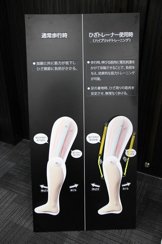 ひざトレーナーを装着して歩くと効率よく筋力アップできる