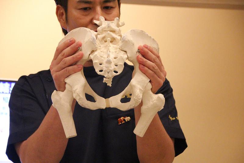 間違った箇所を刺激すると骨盤のゆがみはとれない