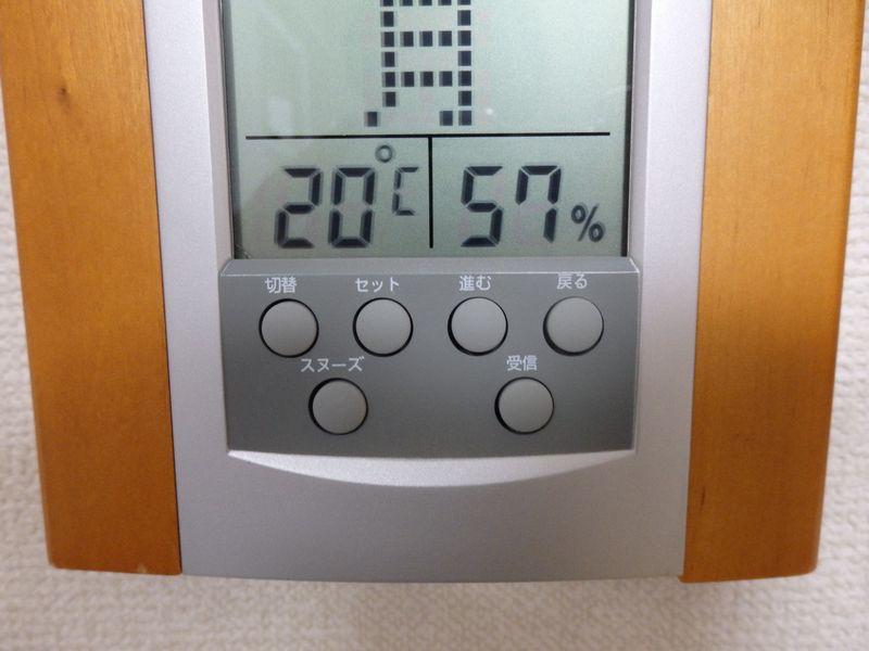 室温20℃、湿度57%と、11月中旬にしては、まだそんなに寒さを感じない
