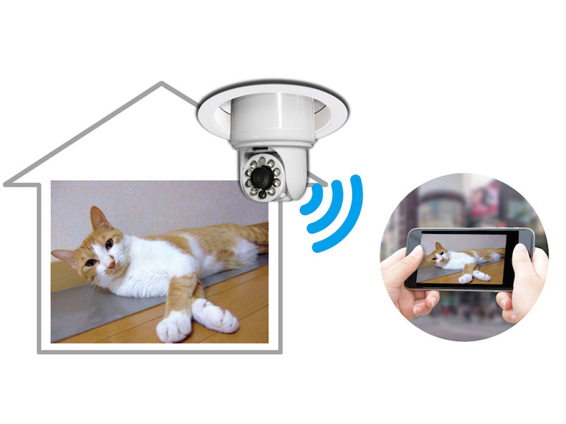 ペットの見守りはもちろん、店舗の防犯カメラとしても使える