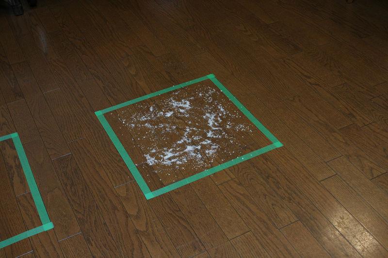 いつもの実験より少量のゴミで清掃性能をテスト!