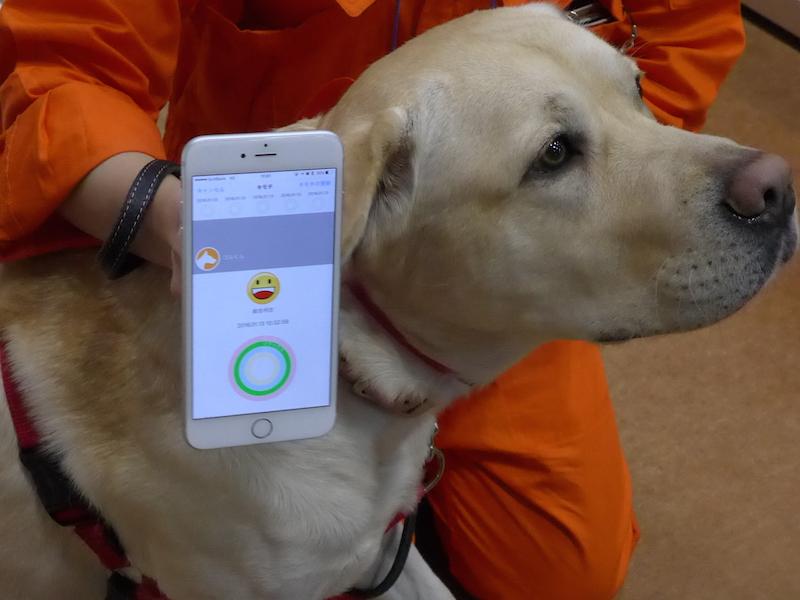 犬や猫の気持ちが専用のスマートフォンアプリで分かるという
