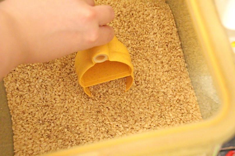0.5合を計るときはラクダの首を持つと簡単。反対側にお米が入らないように注意
