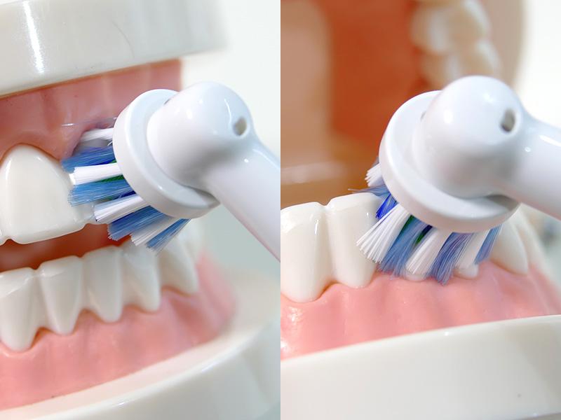 ブラシは軽く当てるようになぞっていく。ブラシが小さいので歯の一本一本が意識しやすい