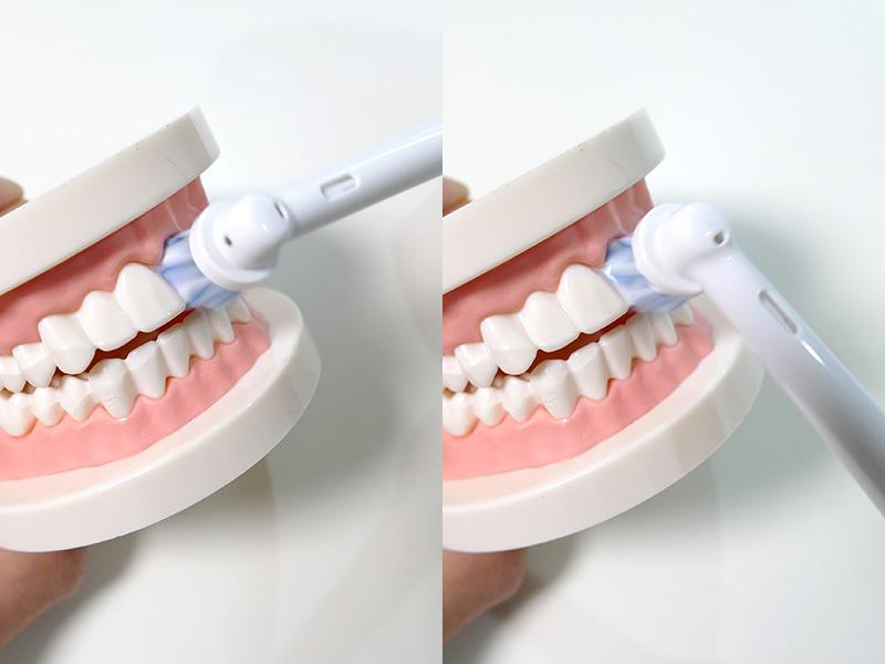 丸いブラシなので、縦でも横でも同じようにブラシが歯に当たる