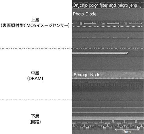 新開発センサーの断面構造
