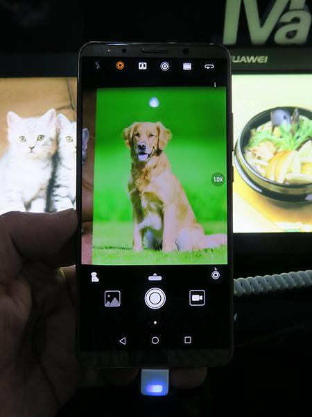 カメラを起動し、被写体に向けると、被写体を自動的に認識し、それぞれに合った設定に切り替えられる。認識した被写体の種類は左下にアイコンで表示される