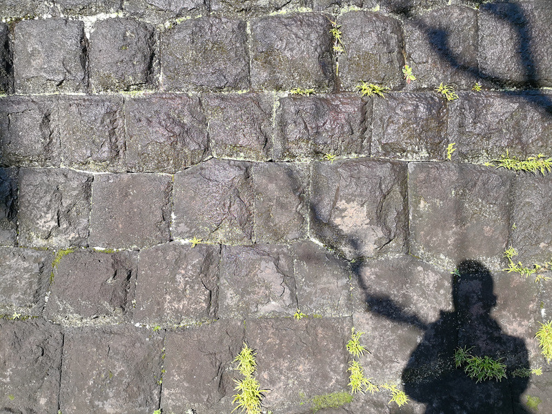 日差しの中、雪解け水で濡れる石壁。だが、濡れている感じまでは出なかった。モノクロの解像度は見事。そもそも色情報がほとんどなないので、石壁のディテールだけにするか、もっと影で遊ぶべきだった